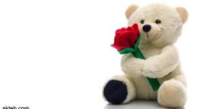 lover-bear-nu789-love-bear-