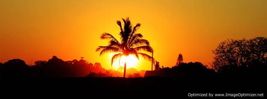 صور للفيس بوك خلفيات طبيعية غروب الشمس ونخل وطبيعة جميلة