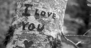 حب في حب