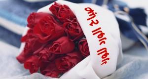 صور صباح الحب والورد