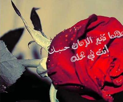حبيبي صور صباح الخير Pictures To Pin On