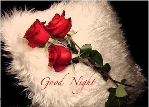 مساء الورد