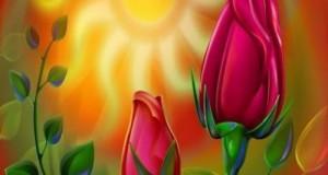 3d_rose
