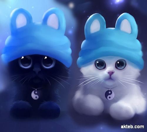 Persian Cat Clipart Rag Doll صور قطط