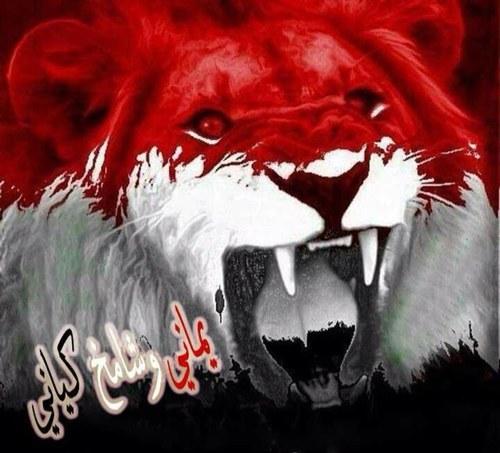 احبك يابلادي اليمن