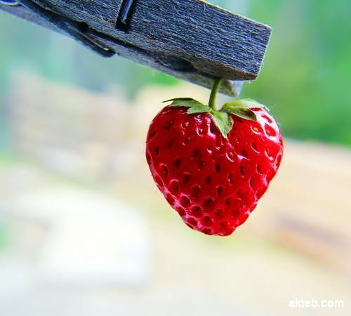 قلب فراولة