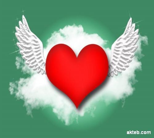 صور قلب طائر