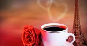 قهوة و ورده