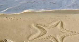 صور البحر