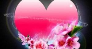 قلب وورد