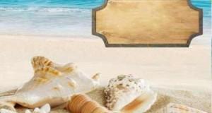شاطئ البحر
