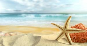 البحر صور
