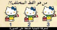 القط المختلف