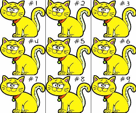 قطط متشابهة
