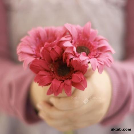الورد جميل