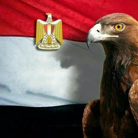 في حب مصر