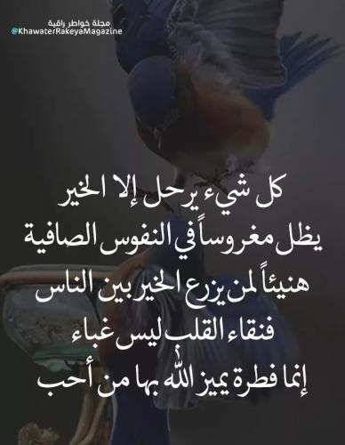 حكم وامثال جميلة عن الحياة صور حكم عن اليوم أكتب اسمك على الصور